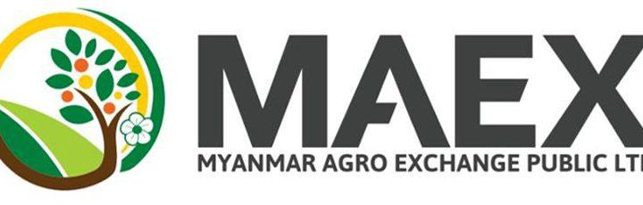 မြန်မာအက်ဂရိုအိတ်(စ်)ချိန်းပတ်ဘလစ်လီမိတက် (Myanmar Agro Exchange Public Ltd -MAEX)  တွင်ရင်းနှီးမြုပ်နှံမှု